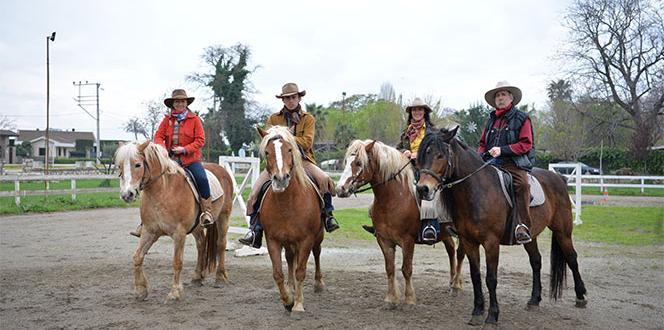 Test of US cowboys with Turkish horses