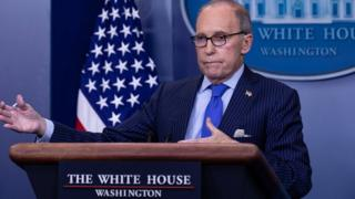 Picture of Director Of the National Economic Council Larry Kudlow