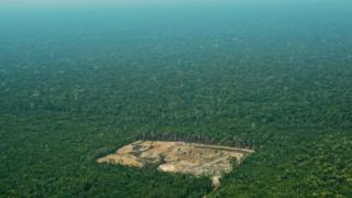 A patch of deforested land in the Amazon rainforest