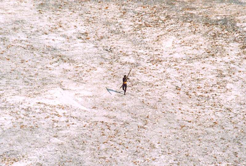 a bird standing on top of a field: A Sentinel tribesman aimed with his bow and arrow at an Indian Coast Guard helicopter as it flew over the island in 2004. North Sentinel Island is home to one of the last undiluted hunter-gatherer societies, a rugged, Manhattan-size island where a few dozen people live trapped in time and in total isolation.