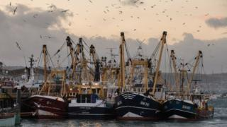 Fishing boats moored in Brixham harbour