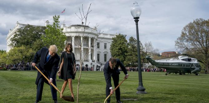 The Latest: Macron, Trump plant tree together at White House