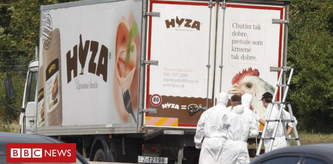 Hungary jails gang for deaths of 71 migrants in lorry