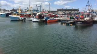 MPs take inquiry to Portavogie harbour