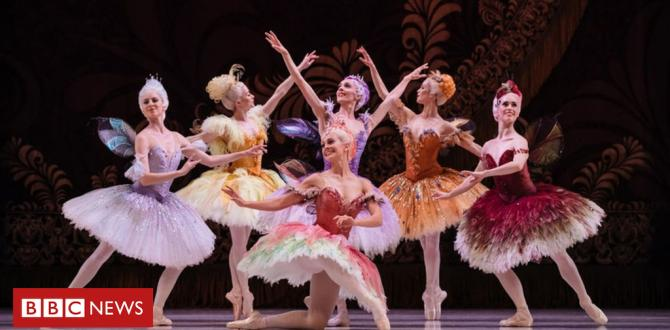 Australian Ballet efficiency reduce quick through rat