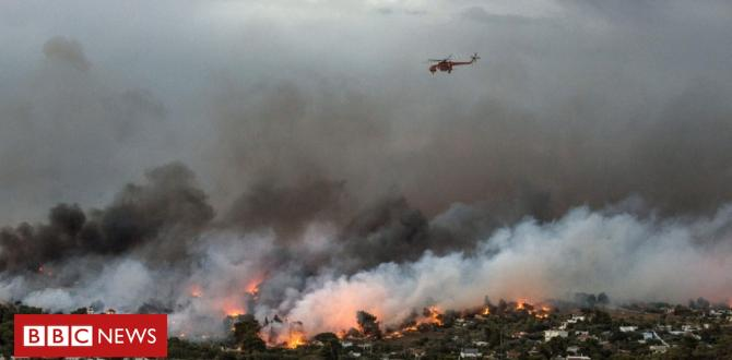 Greece wildfires: 'Hundreds went into the ocean '