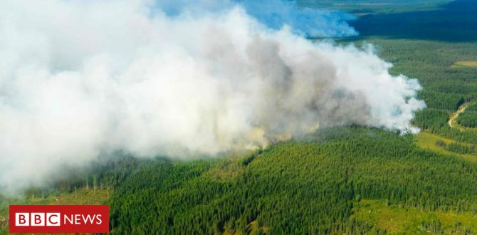 In pictures: Preventing the Swedish wildfires