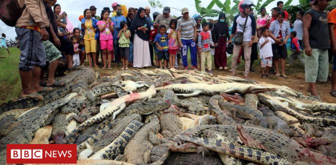 Indonesia mob slaughters nearly THREE HUNDRED crocodiles in revenge killing
