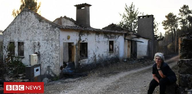 Portugal's wildfire that broke a group