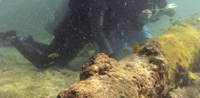 Should shipwrecks be left by myself?