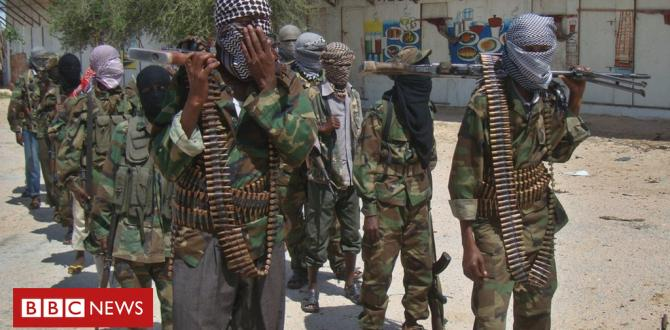 Somalia's al-Shabab contains out assault on military base