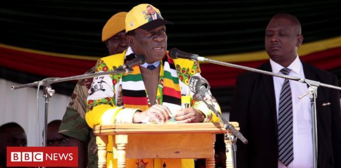 Zimbabwe's President Mnangagwa appeals for racial team spirit sooner than election