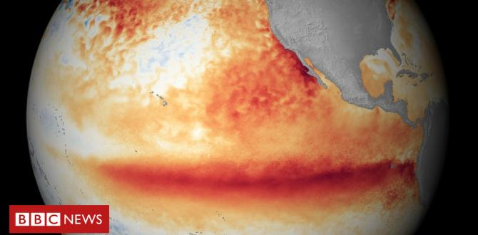 New El Niño climate experience most probably this wintry weather says WMO
