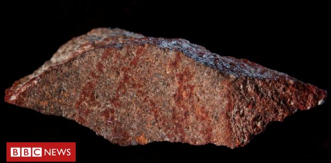 'Oldest known drawing' found on tiny rock in South Africa