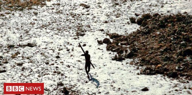 American 'killed in India by endangered Andamans tribe'