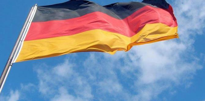 FETO scandal resolution from Germany