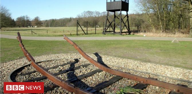 Holocaust: Dutch rail firm NS to pay families repayment