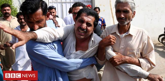 Karachi assault: China consulate attack leaves 4 useless