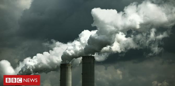 Local Weather amendment: CO2 emissions rising for first time in 4 years
