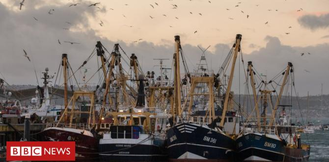UNITED KINGDOM 'will now not industry away fishing' in Brexit deal – Might