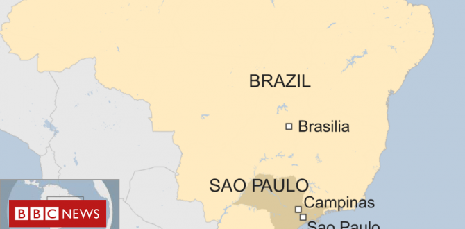 Brazil capturing: Five useless as gunman opens hearth in cathedral