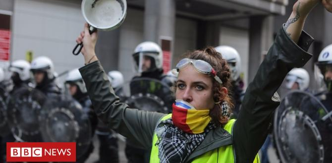 France gas protests: who are the folk in the yellow vests?