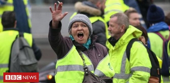 France fuel protests: who're the folk within the yellow vests?