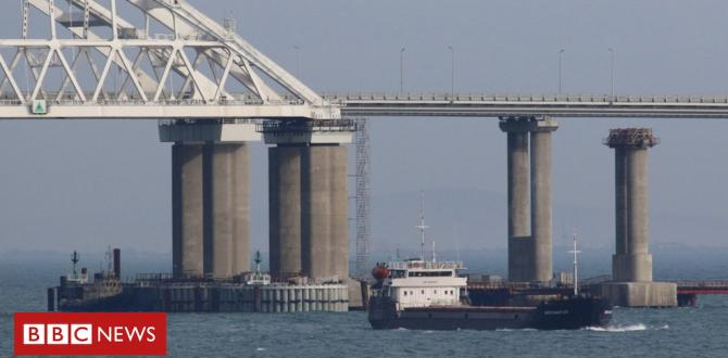 Russia 'partially unblocks' Ukraine ports
