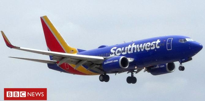Southwest Airways flight U-turns after human middle discovery